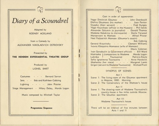 diary of a scoundrel programmw